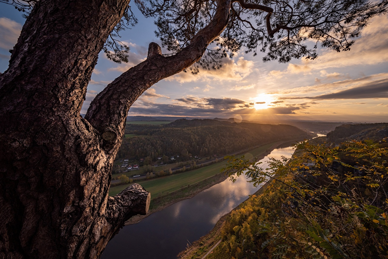 Images Germany Elba River Nature sunrise and sunset Rivers Trees Sunrises and sunsets river