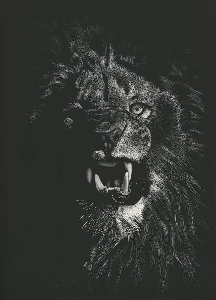 Wallpapers Lions Big Cats Canine Tooth Fangs Angry Black And White