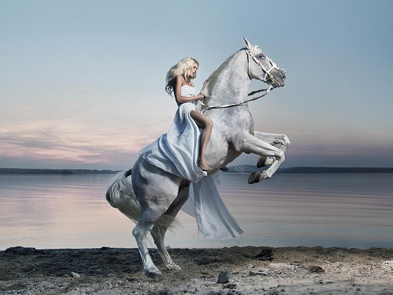 fotos pferde blondine mädchens küste tiere kleid