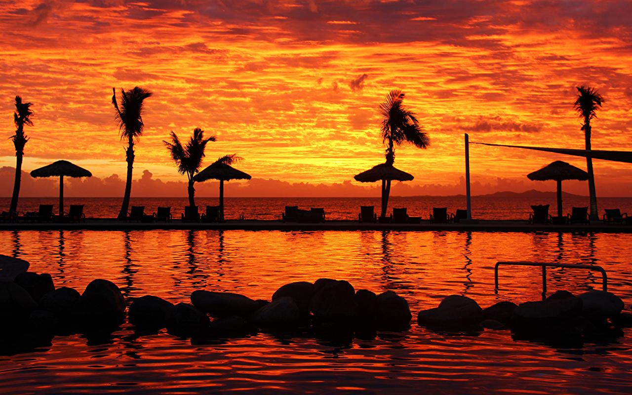 Île Levers et couchers de soleil Denarau Island Fiji Arecaceae Piscine l'aube et le coucher du soleil, Les palmiers, Palmae Nature