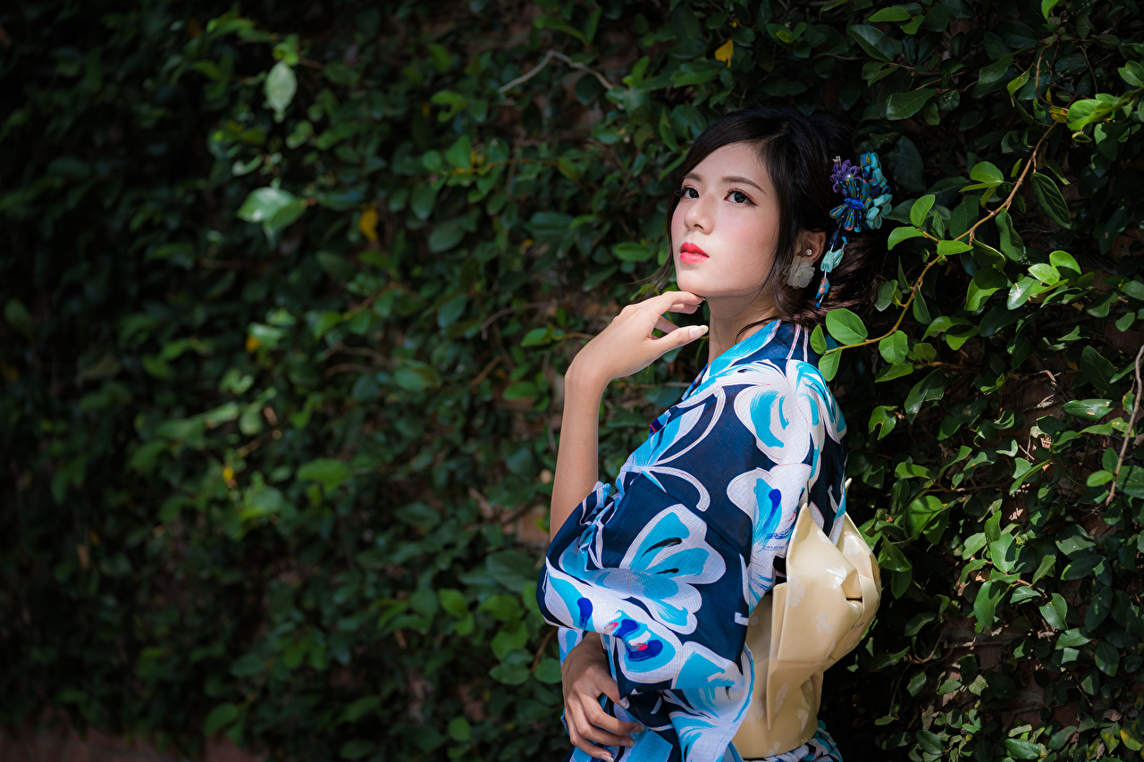 Desktop Hintergrundbilder Brünette posiert Kimono Mädchens Asiaten Ast Hand Pose junge frau junge Frauen Asiatische asiatisches