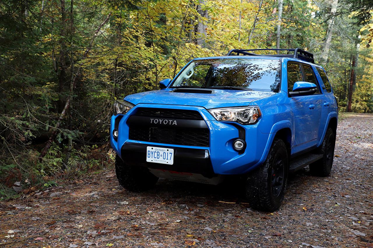 Foto Toyota SUV Hellblau Autos Metallisch Sport Utility Vehicle