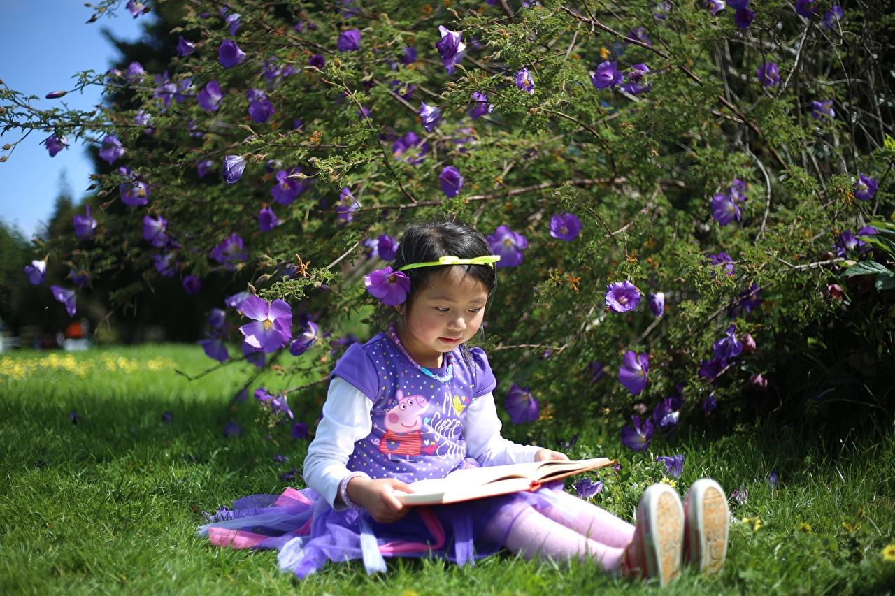 Bilder von Kleine Mädchen Kinder Asiatische Gras Bücher Sitzend Buch sitzt sitzen