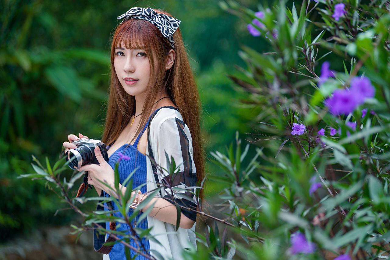 Fotos von Braune Haare Fotoapparat Bokeh Mädchens Asiatische Ast Starren Braunhaarige unscharfer Hintergrund junge frau junge Frauen Asiaten asiatisches Blick