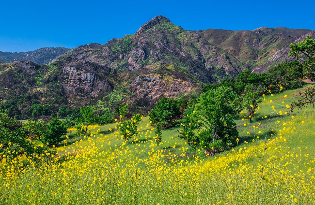 Bilder von Kalifornien Vereinigte Staaten Malibu Creek State Park Berg Natur USA Gebirge Parks
