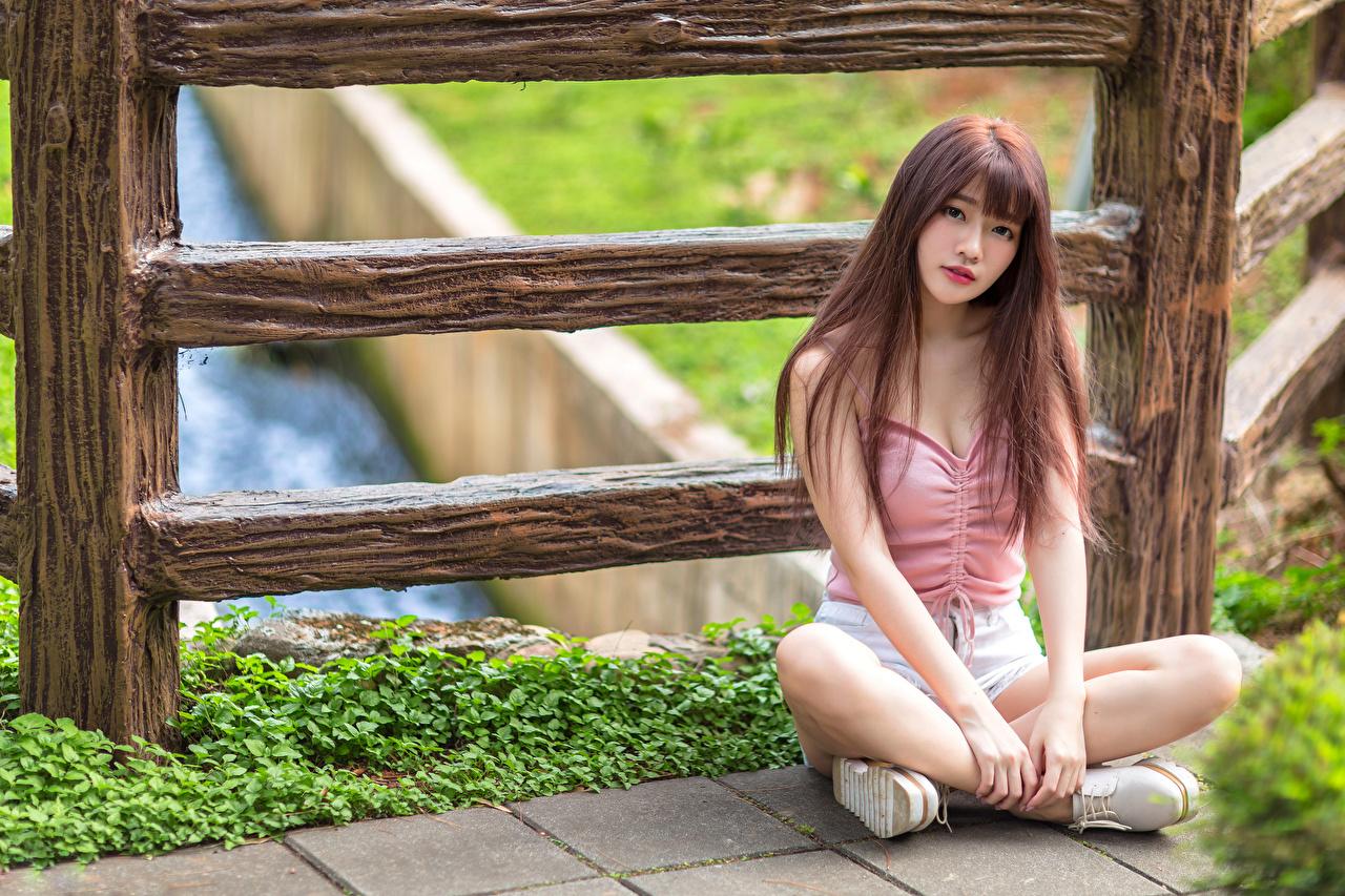 Foto Braune Haare junge frau Asiatische sitzen Blick Braunhaarige Mädchens junge Frauen Asiaten asiatisches sitzt Sitzend Starren
