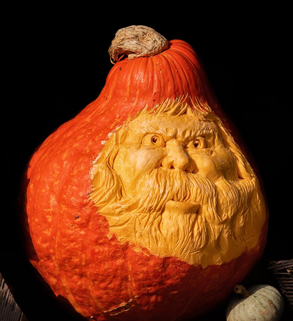 Pictures Old man Pumpkin Halloween Black background Design