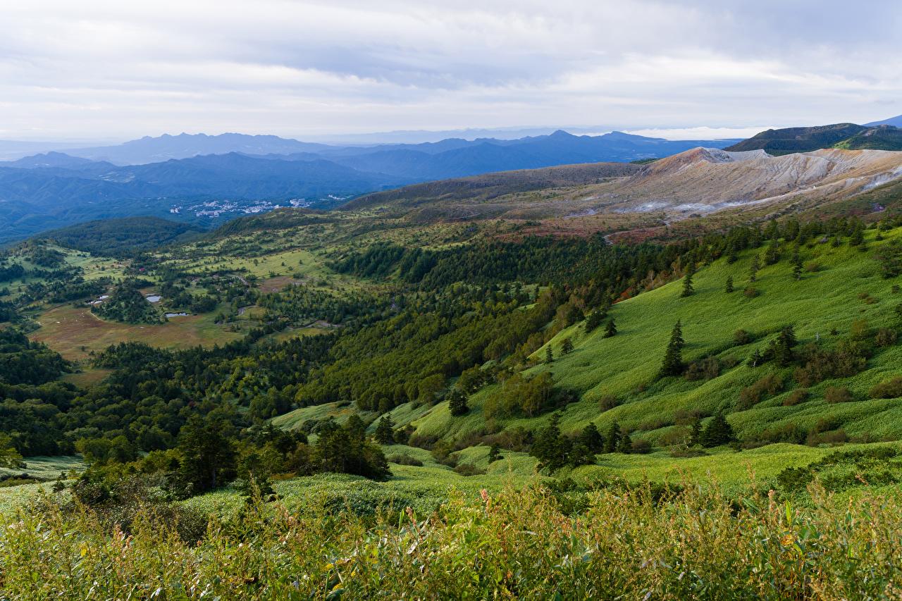 Bilder Italien Natur Hügel Wälder Grünland Landschaftsfotografie Wald