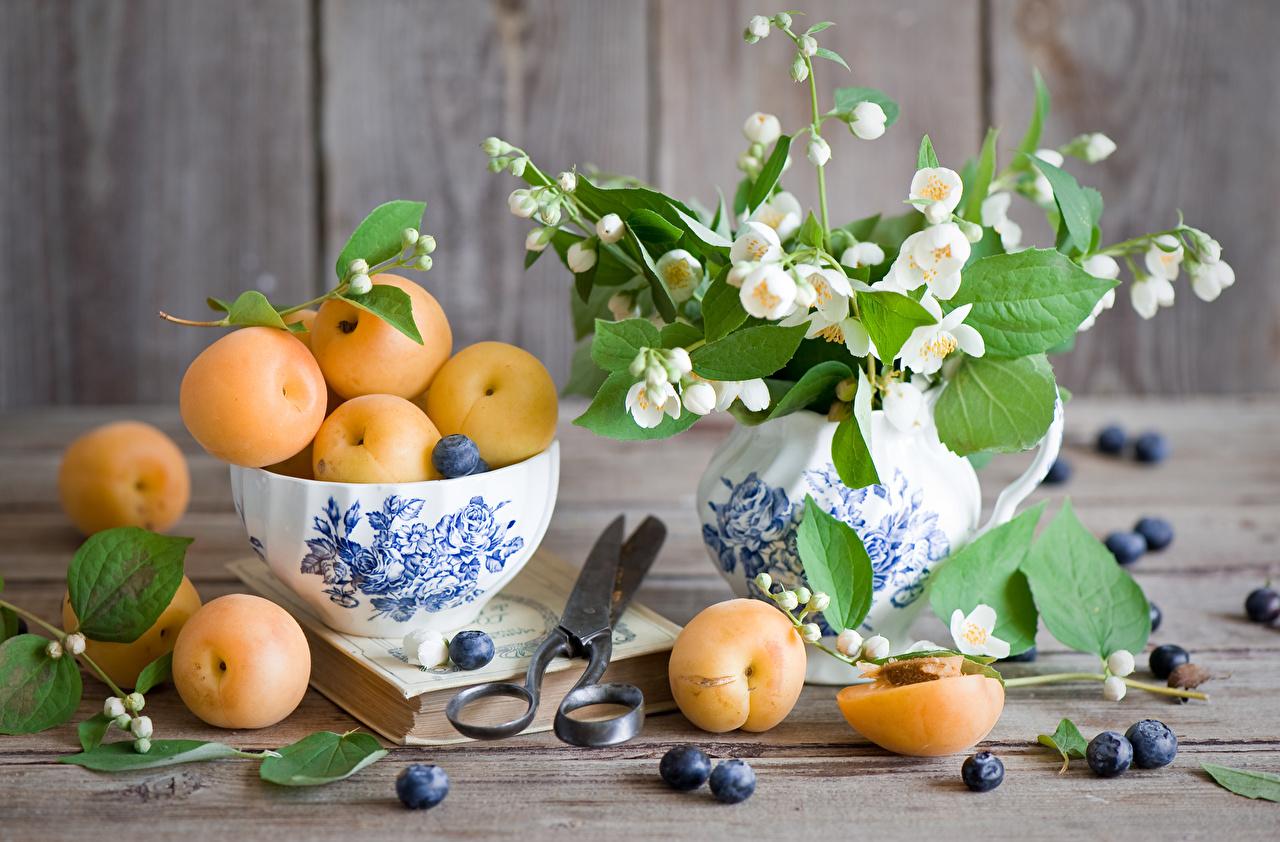 Desktop Hintergrundbilder Marille Jasminum Blüte Vase Lebensmittel Stillleben Aprikose Blumen das Essen