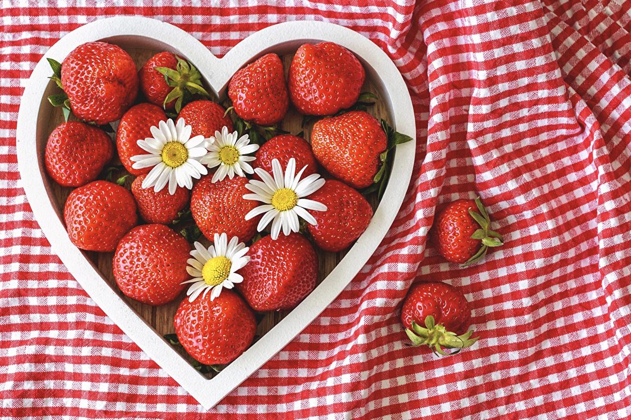Fotos von Herz Rot Kamillen Erdbeeren Beere Lebensmittel das Essen