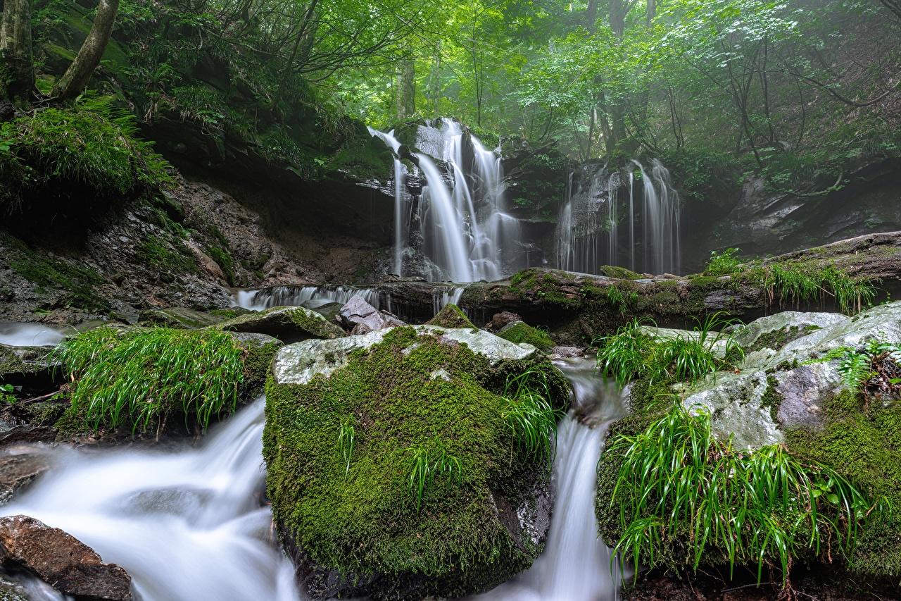Foto Nebel Natur Wasserfall Steine Laubmoose Stein