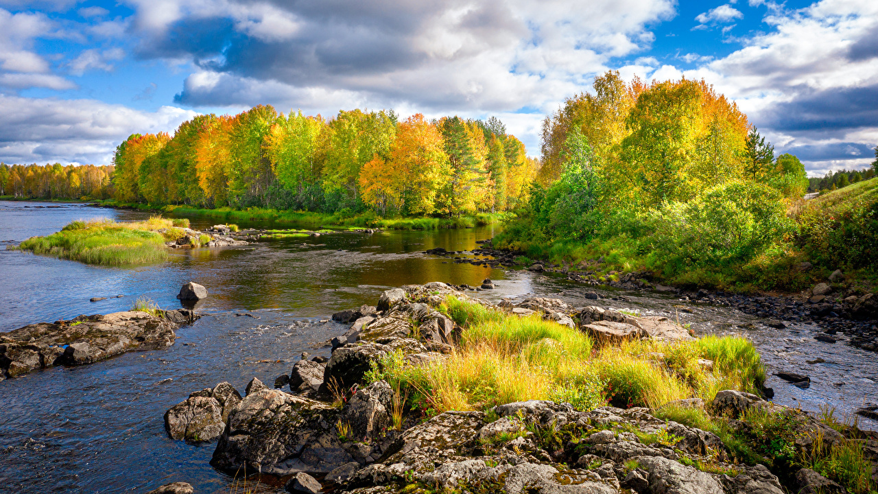 Image Finland Autumn Nature Rivers Stones Trees river stone