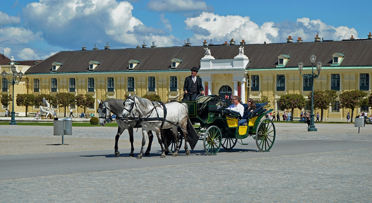 Images Vienna Horses Palace Austria Town square Cities horse