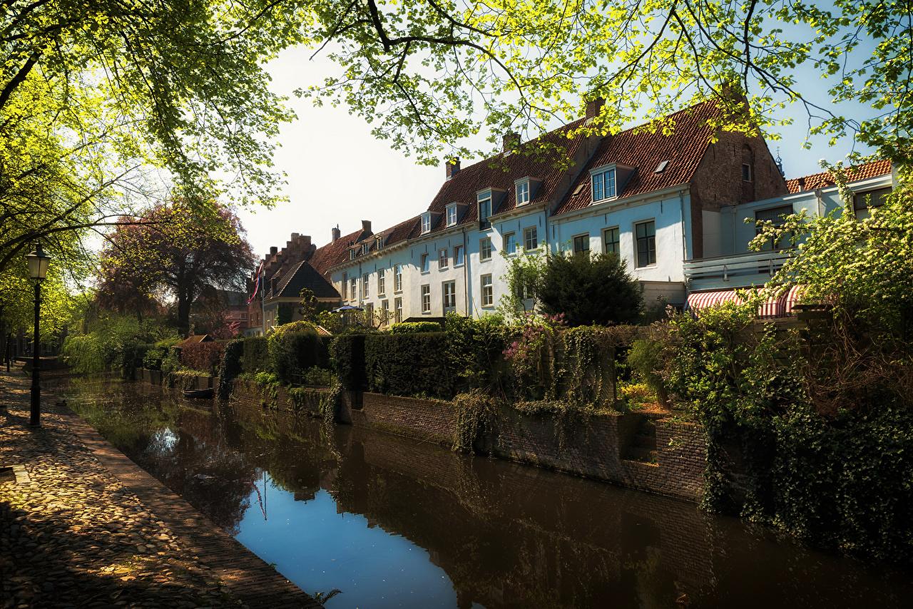 zdjęcia Holandia Amersfoort Kanał wodny Domy Drzewa Miasta miasto budynki budynek