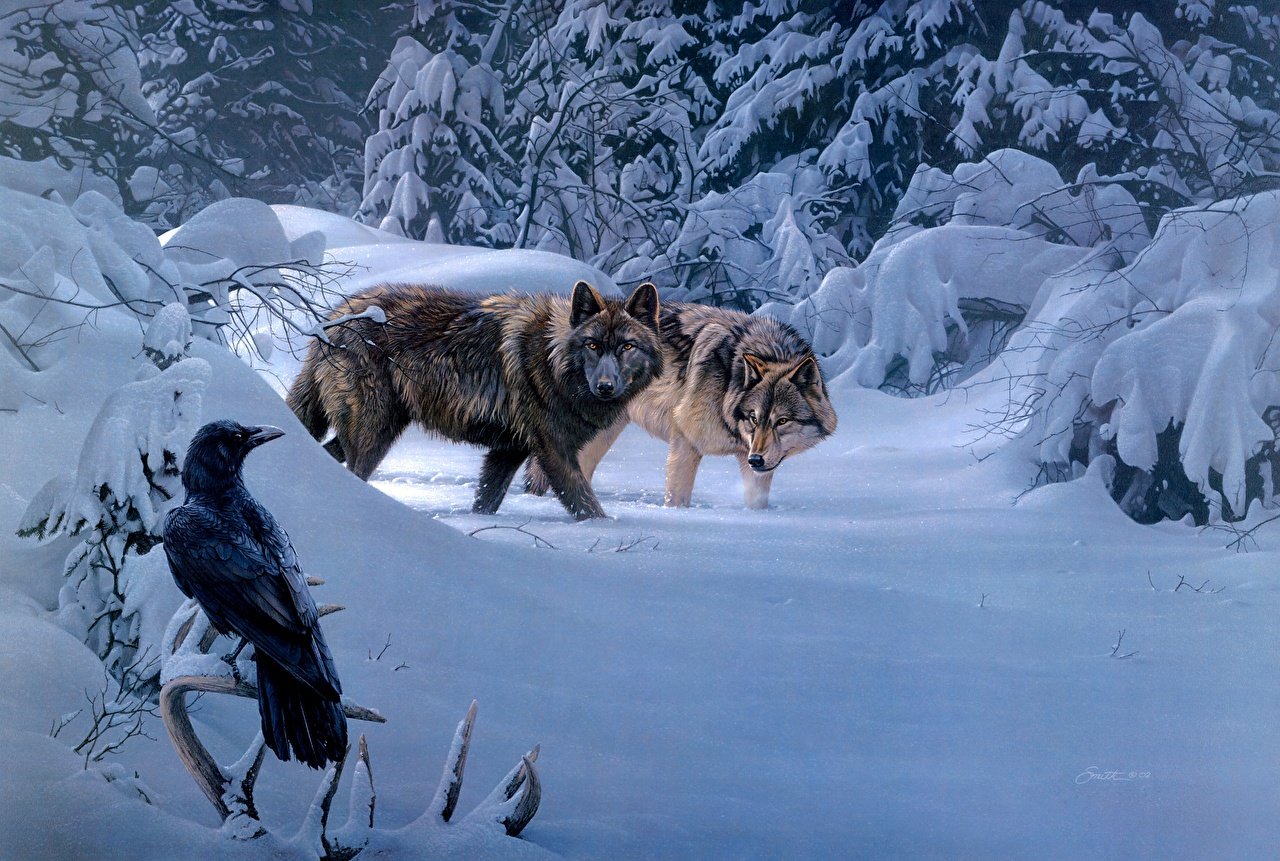 Desktop Wallpapers wolf crow 2 Winter Snow Forests Animals Painting Art Crows Wolves Two forest animal