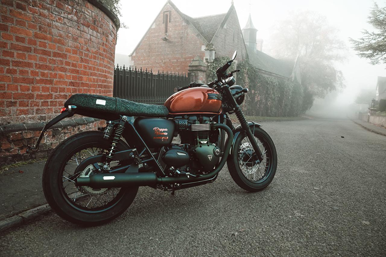 Pictures Triumph 2017-19 Bonneville Dapper Bonnie DGR100 Green Motorcycles Triumph Motorcycles Ltd motorcycle