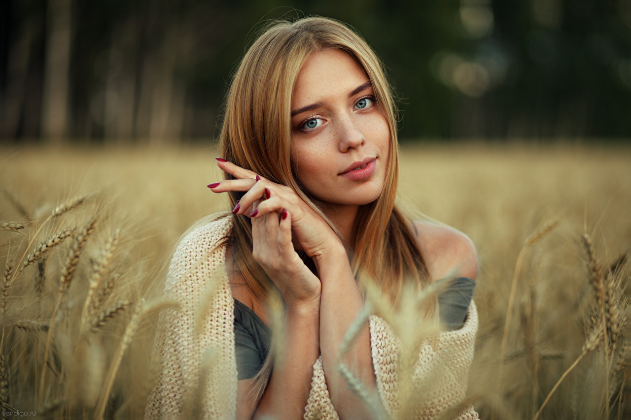 Photo Girls Ear botany Bokeh Hands Glance Evgeniy Bulatov female young woman spike spikes blurred background Staring