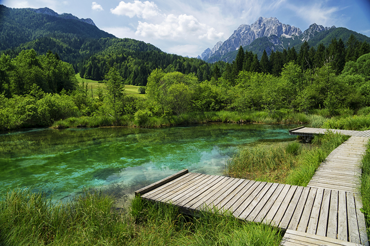 Fotos Slowenien Zelenci Lake Berg Natur See Wald Bootssteg Gebirge Wälder Seebrücke Schiffsanleger