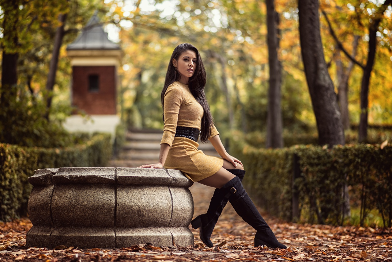 Images Leaf Wearing boots Lorena Autumn female Legs sit Staring Dress Foliage Girls young woman Sitting Glance gown frock