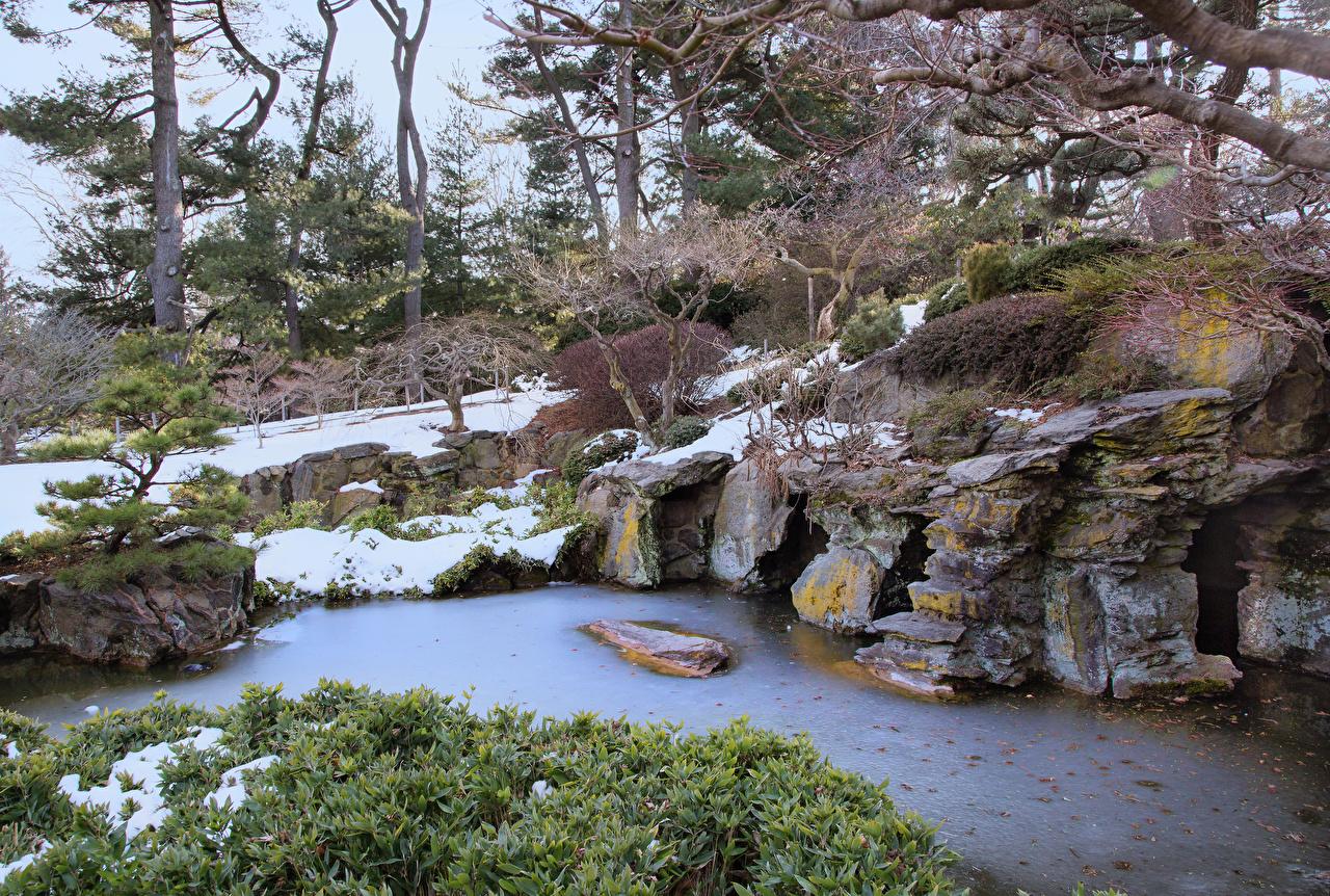 、アメリカ合衆国、公園、Brooklyn Botanic Garden、渓流、雪、自然