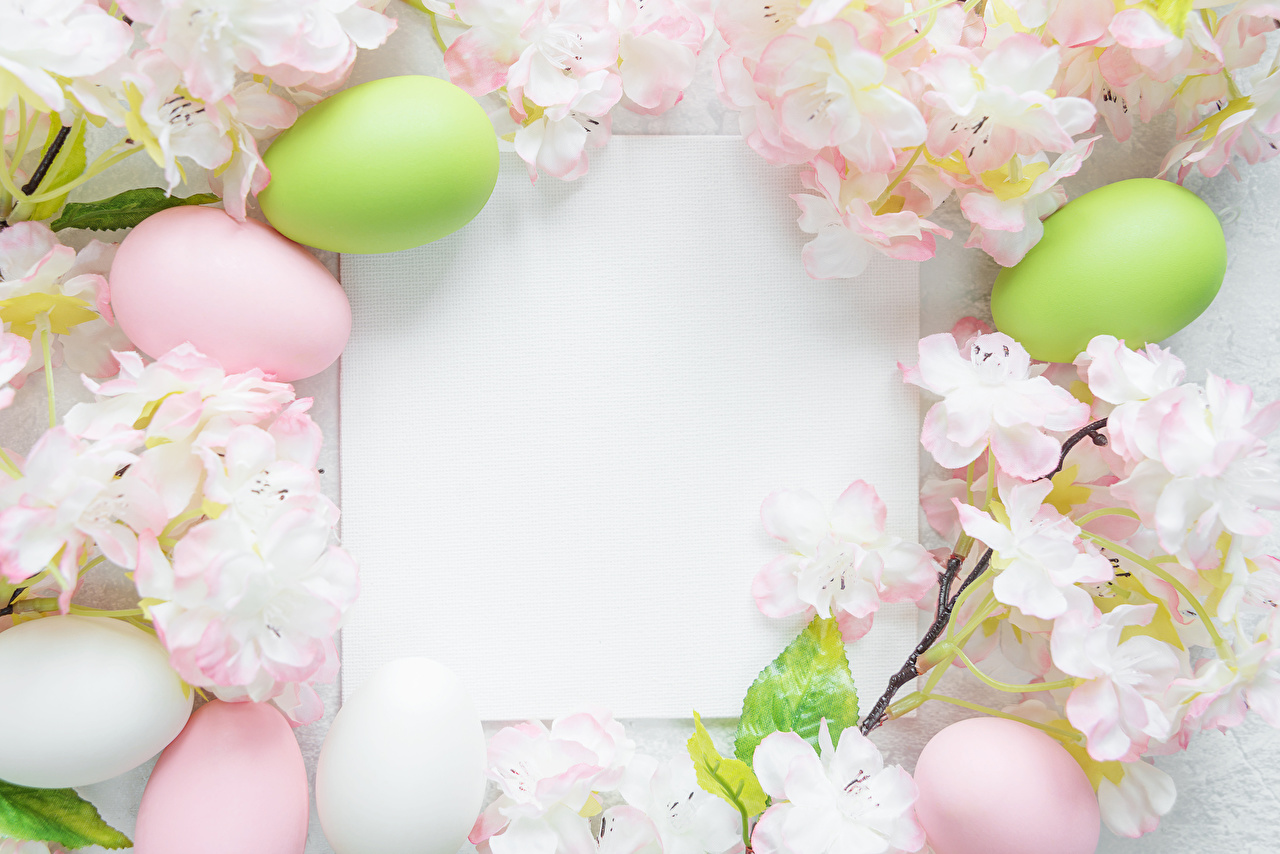 Image Easter Sheet of paper Eggs Template greeting card Flowering trees egg