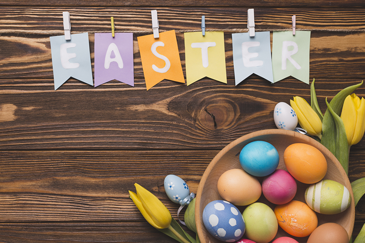 Image Easter English Multicolor egg Tulips flower lettering Food Wood planks Eggs tulip text Flowers Word - Lettering boards