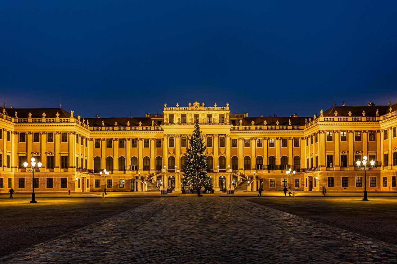Afbeelding Wenen Paleis kerstmis Oostenrijk stadsplein Kerstboom Nacht Straatverlichting Steden kerst Nieuwjaar Een plein een stad