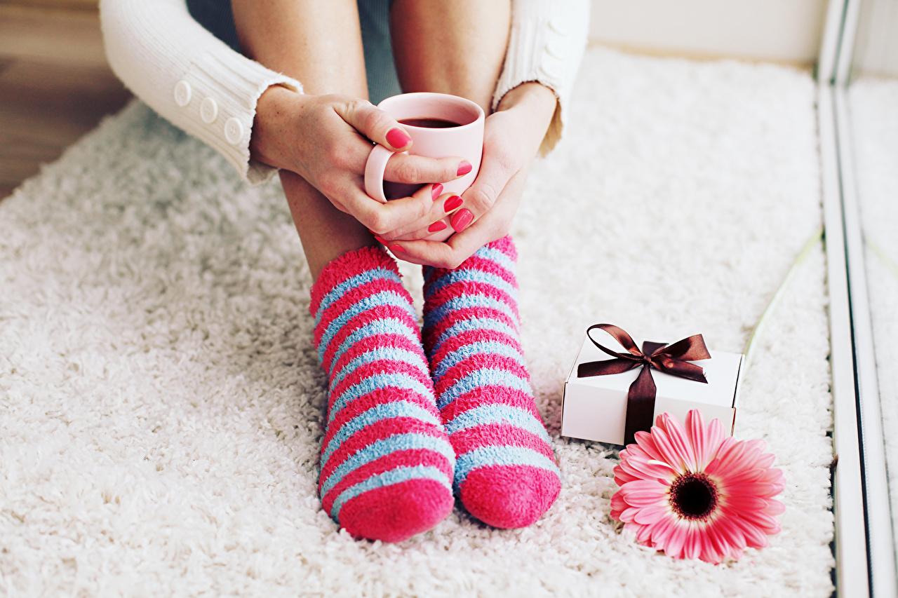 Image Socks Coffee gerbera Legs present Cup Gerberas Gifts