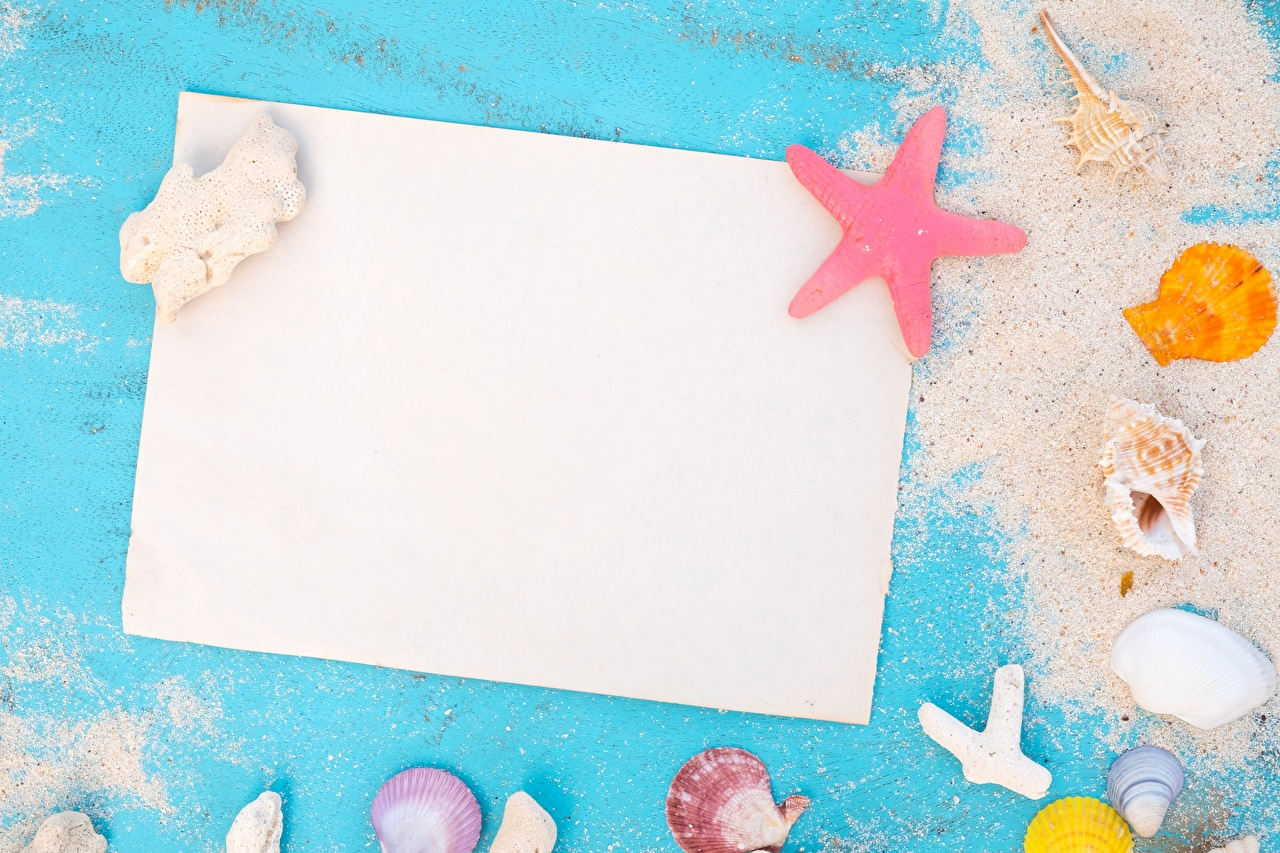 Bilder Blatt Papier Sommer Sand Muscheln Vorlage Grußkarte