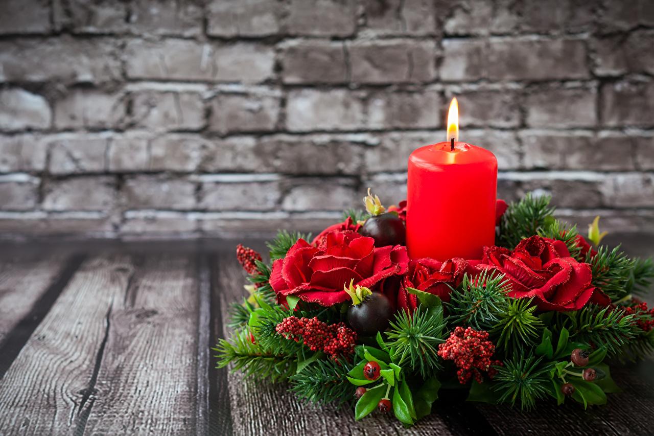 Fotos Neujahr Rose Ast Mauer Kerzen Design Bretter Rosen wand wände