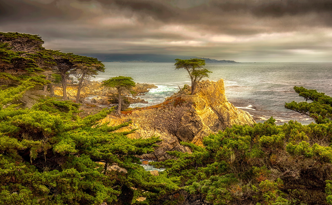 Desktop Wallpapers California USA HDR Crag Nature Coast Trees Clouds HDRI Rock Cliff