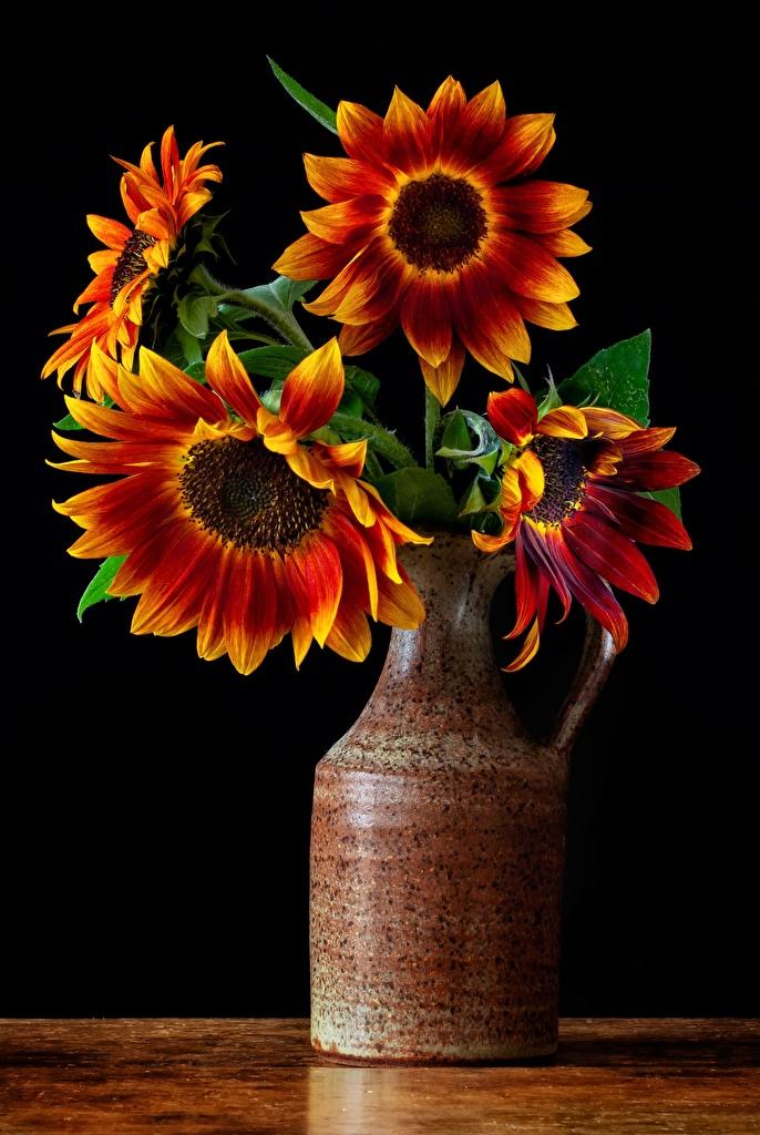 Fotos von Sträuße Blüte Sonnenblumen Vase  für Handy Blumensträuße Blumen