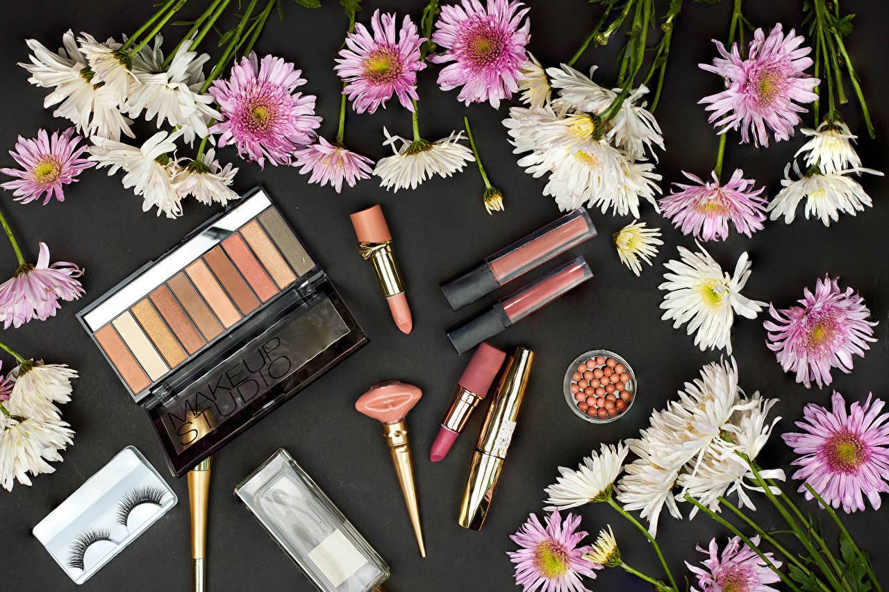 Picture Lipstick Cosmetics flower Chrysanthemums Many Gray background Mums Flowers Chrysanths
