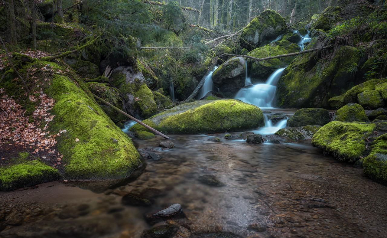 Pictures Nature Creeks Waterfalls Moss Stones brook Creek Stream Streams stone