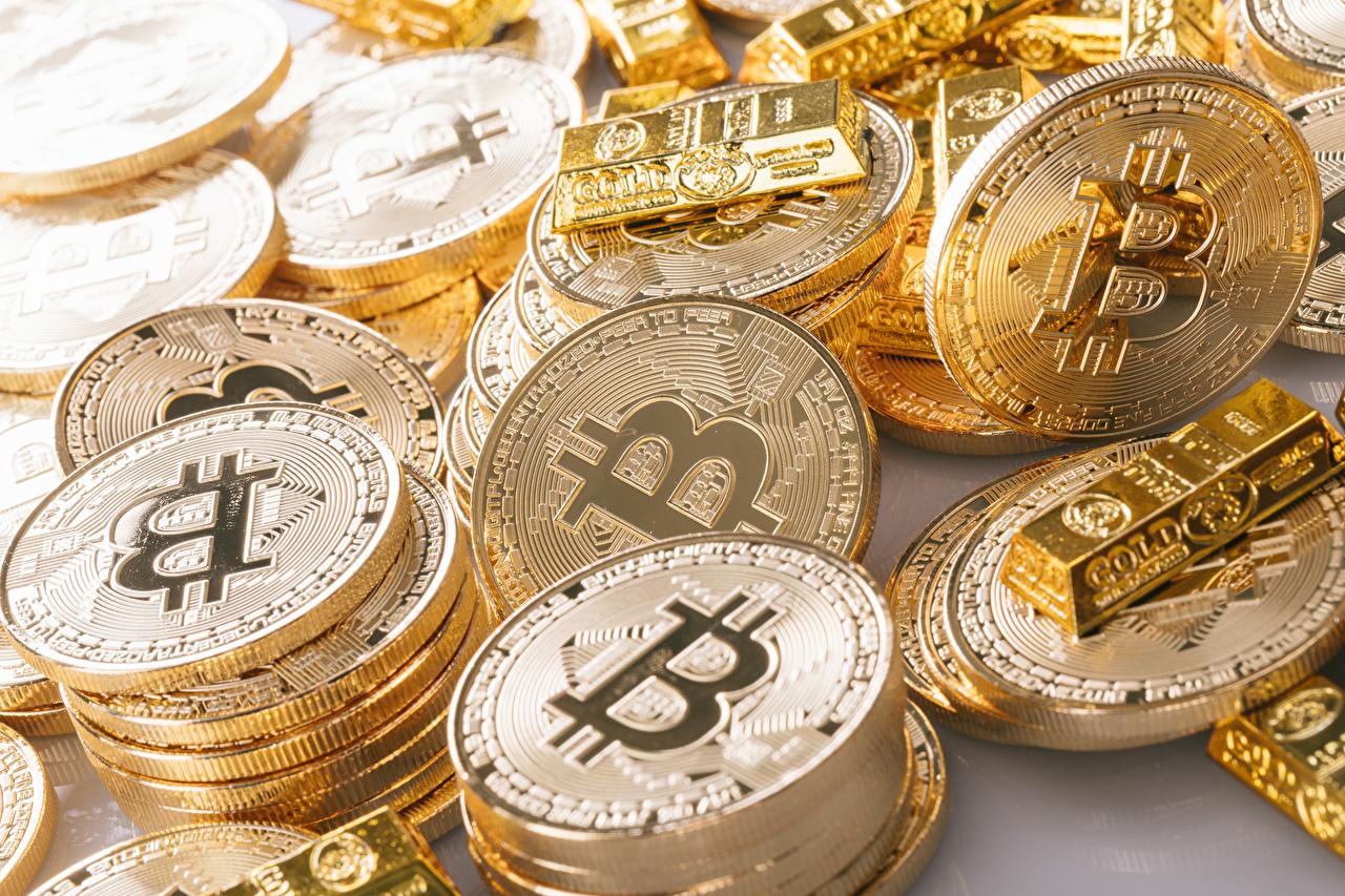 Bilder von Münze Bitcoin Gold Gold Farbe Geld Viel Großansicht hautnah Nahaufnahme