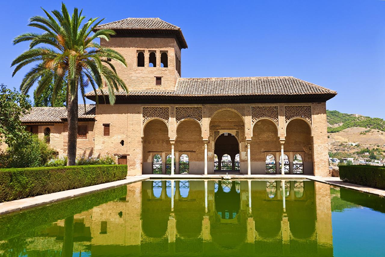 Photos Spain Pools Alhambra de Granada park palm trees Cities Building Swimming bath Parks Palms Houses