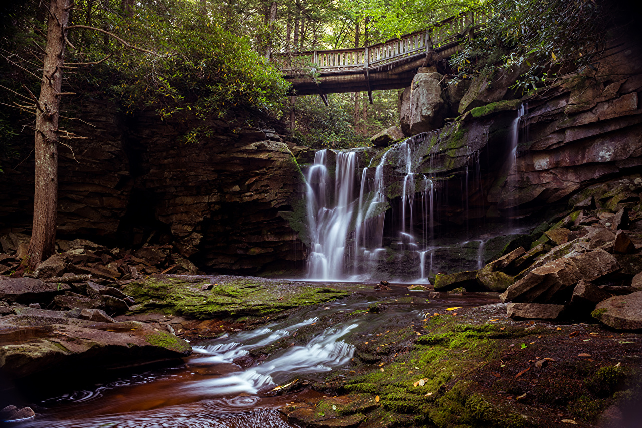 Picture USA Blackwater Falls State Park Nature Bridges Waterfalls Parks Moss Stones Trees bridge park stone