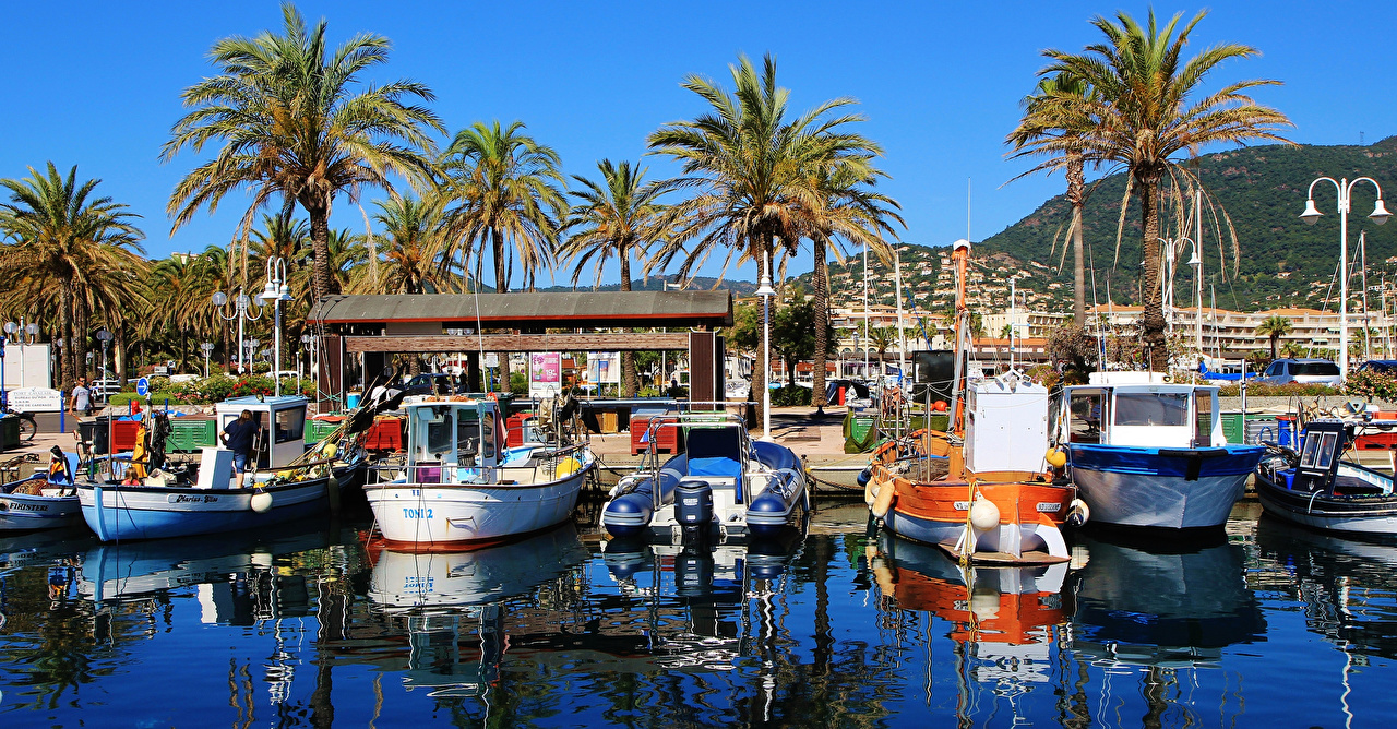 Images France Port Cavalaire-Sur-Mer palm trees Bay Berth Boats speedboat Street lights Cities Palms Pier Marinas Motorboat powerboat