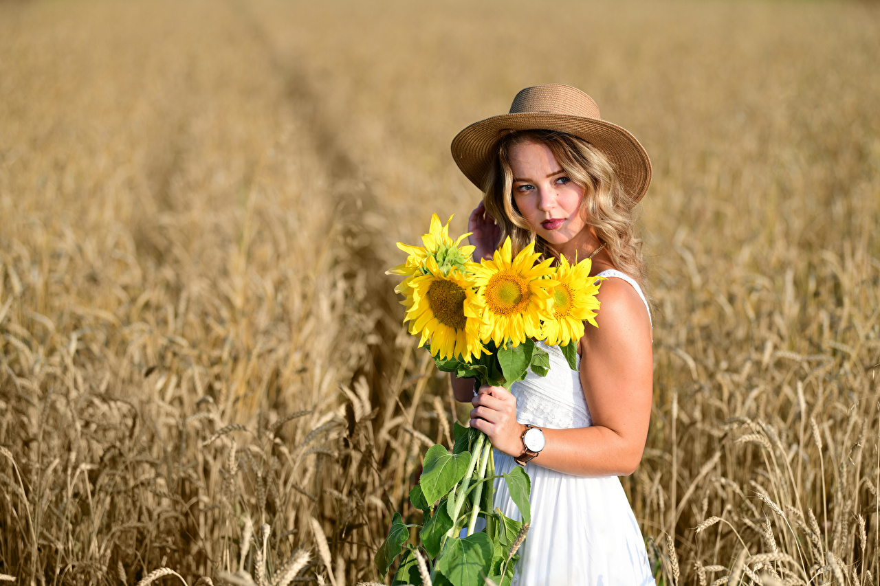 Foto Bokeh Blumensträuße Der Hut junge Frauen Felder Blumen Sonnenblumen Hand Blick Kleid unscharfer Hintergrund Sträuße Mädchens junge frau Acker Blüte Starren