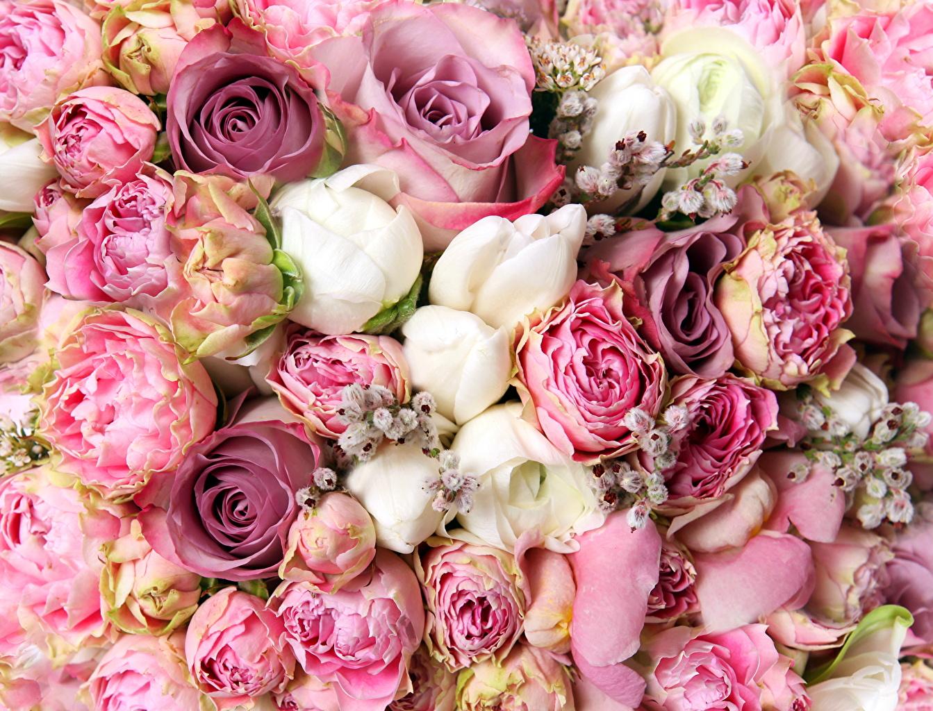 壁紙 ブーケ バラ キンポウゲ属 たくさん 花 ダウンロード 写真