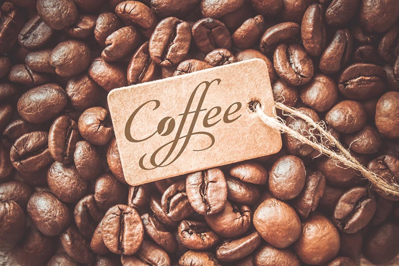 Bilder Kaffee Getreide Großansicht