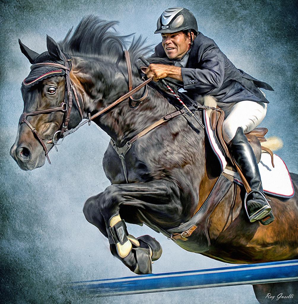Desktop Hintergrundbilder Hauspferd Mann Helm Sport Pferdesport Sprung Pferd Pferde sportliches