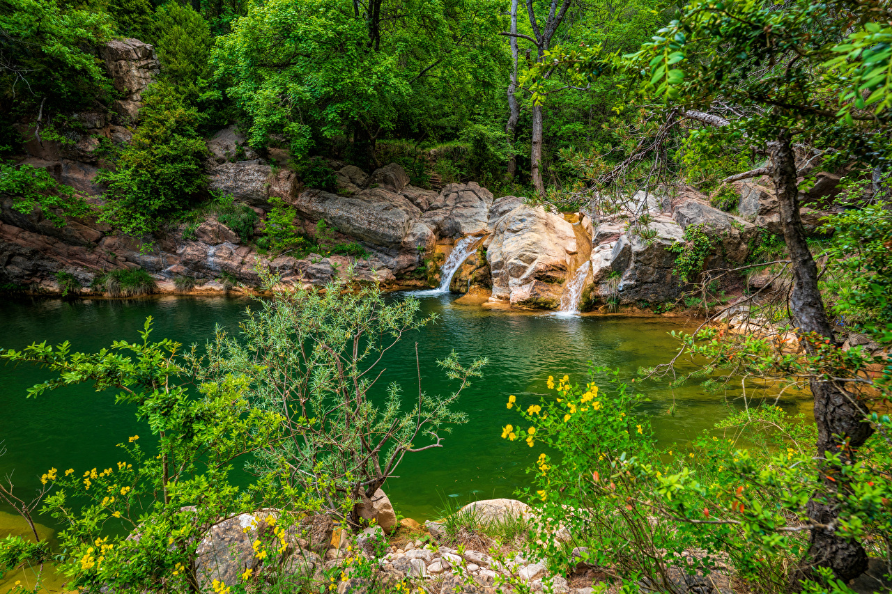 Image Spain Catalonia brook Nature forest stone Creek Creeks Stream Streams Forests Stones