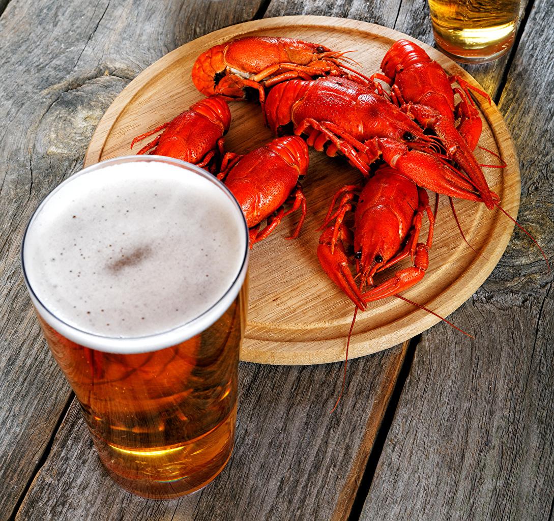 Fotos Bier Trinkglas Flusskrebs Lebensmittel Meeresfrüchte