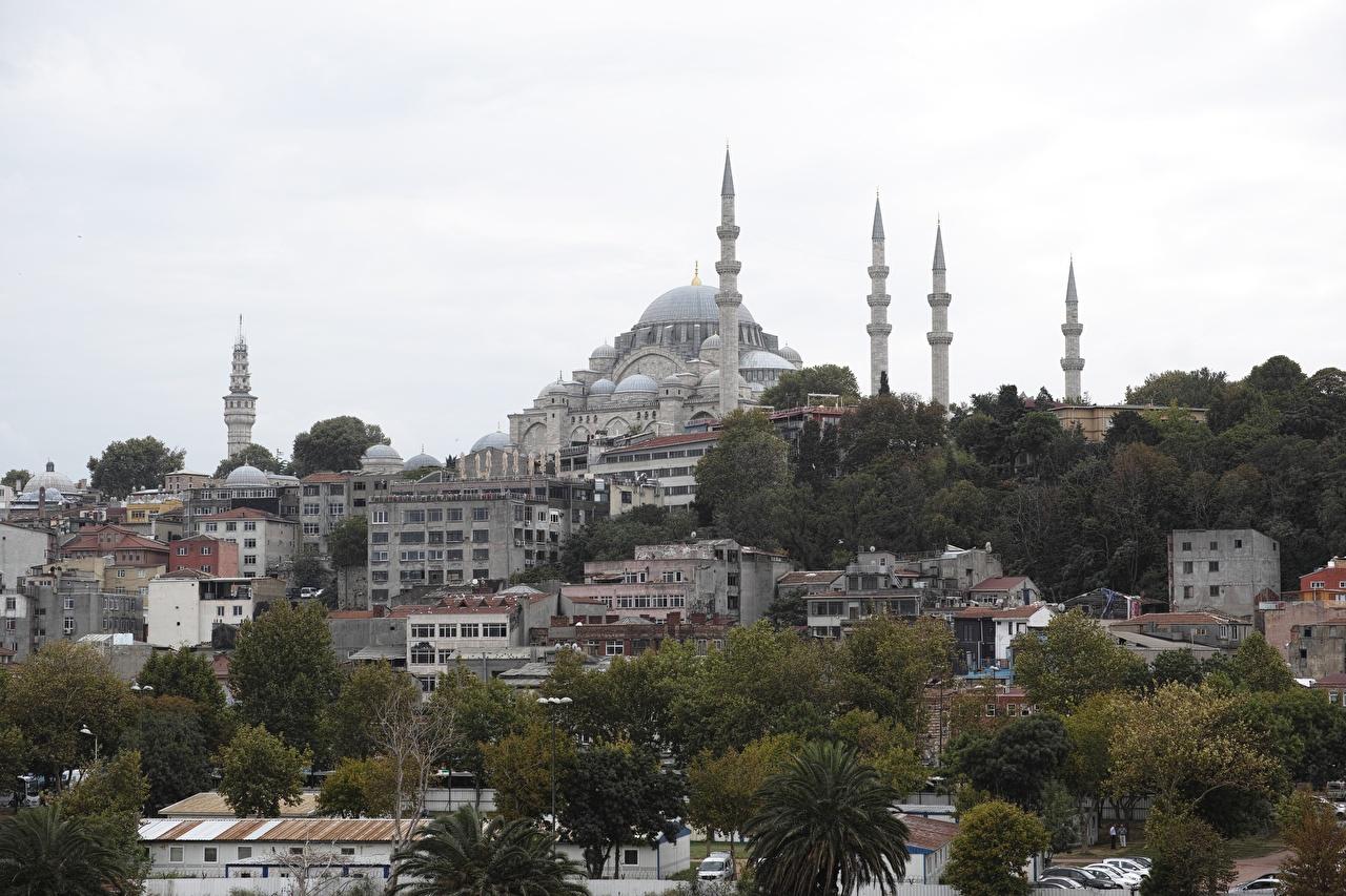 Hintergrundbilder Istanbul Moschee Türkei Sultanahmet Haus Bäume Städte Gebäude