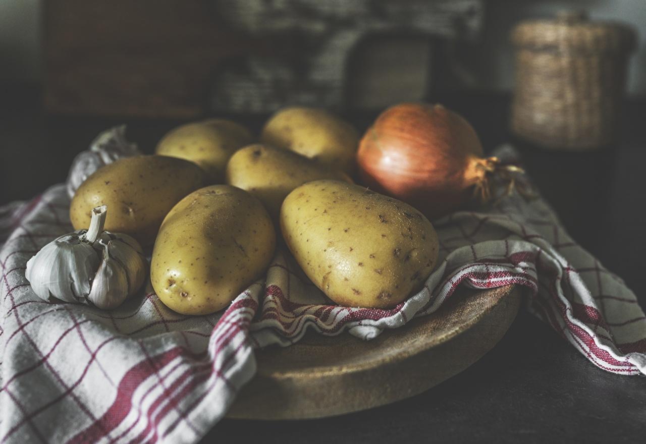 Picture Bokeh Onion Potato Garlic Food blurred background Allium sativum
