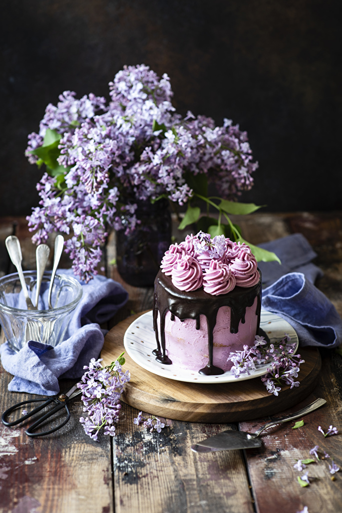 Photo Chocolate Torte Syringa Food Still-life Design Wood planks  for Mobile phone Cakes Lilac boards