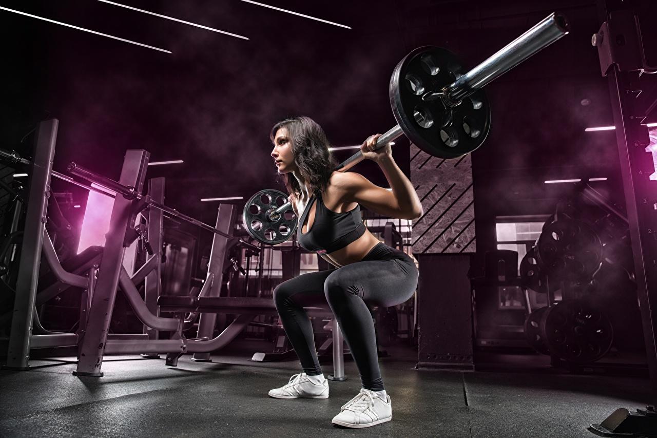 Desktop Hintergrundbilder Mädchens Turnhalle Trainieren Pose Fitness Sport Kniebeugen Hantelstange junge frau junge Frauen Fitnessstudio Körperliche Aktivität posiert hockt Kauert sportliches