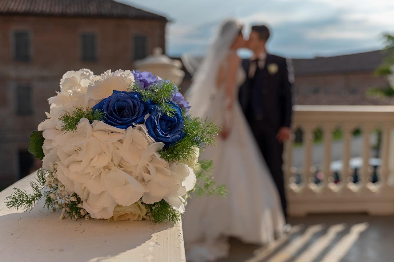 Picture Bride Wedding Man Bokeh kisses Bouquets 2 Flowers noces brides marriage Men blurred background Kiss bouquet kissing Two flower