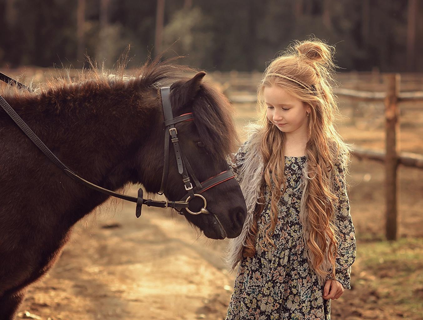 Fotos von Pony Kleine Mädchen Pferd Victoria Dubrovskaya kind Haar Tiere Pferde Hauspferd Kinder ein Tier